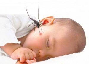Sốt xuất huyết ở trẻ em: Nguyên nhân và những lưu ý dành cho cha mẹ